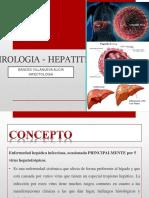 Hepatitis Viral Finalllllllllllllllllllllllllllllllllllllll