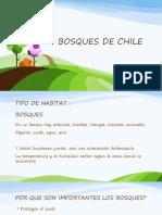 BOSQUES DE CHILE.pptx