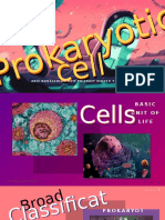 Edited Prokaryotic.pptx