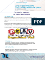 Informacion Curso Pesv d.e