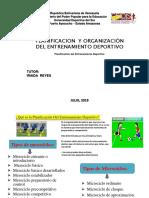 Planificacion Del Entrenamiento Deportivo, Pedro Perez