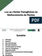 GERALDI Uso Plantas Transgenicas Melhoramento Genetico