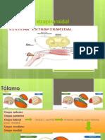 Sindrome Extrapiramidal.pptx