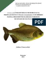 INFECCOES PARASITARIAS E MICROBIANAS.pdf