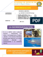 BIORREMEDIACION-PPT-2