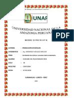 INFORME BUFALO N° 01.docx