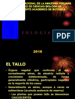 El Tallo 2018