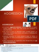 AGGRESSION.pptx
