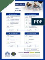 Plan académico.pdf
