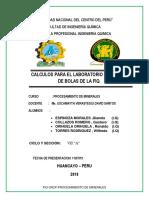 CARATULA-DE-MINERALES.docx