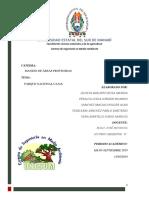 PARQUE NACIONAL CAJAS.docx