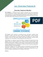 SAP Fieldglass PDF