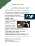 349445657-Criterios-de-Seleccion-de-Los-Pernos-de-Anclaje.docx