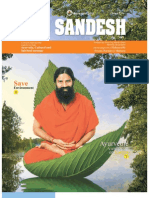 YogSandesh November Eng2010