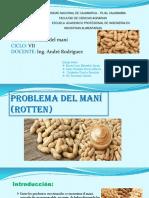 Problema Del Mani