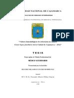 tesis milagros sanches.pdf