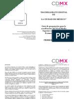 Guias_preparacion_Examen_simulacion_1er_Sem_BADI(1).pdf