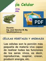 Clase 3 Sistemas de Membrana Clas 1