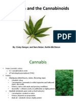 Medical Marijuana Presentation