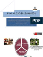 Rvm Nº 030 2019 Minedu