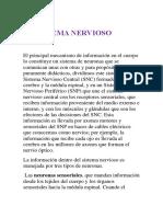 Sistema Endocrino. Nervioso