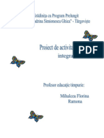 proiect didactic- grupa.docx