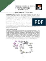 PRACTICA DE BIOLOGIA NRO 6.docx