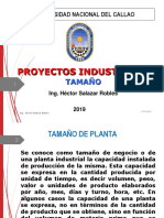 IV Pys Tamaño
