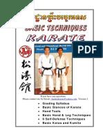 basic-techniques-karate.pdf
