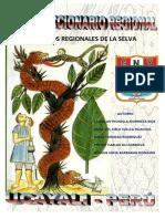 Diccionario Regional