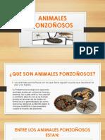 Animales Ponzoñosos