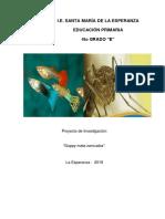 BIBLIOTECA RODANTE PROF LEONILA NUEVO FORMATO.docx
