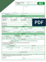 7. Formulario RUT.pdf