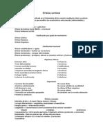 170449219-Ortesis-y-protesis-resumen.docx