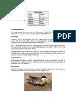 ANAS PUNA BIODIVERSIDAD.docx