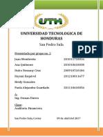 tarea final auditoria (2) (2).docx