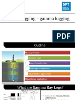 Gamma log.pptx