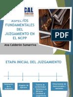 23-8-16 Acs Cap -Desarrollo Del Juzgamiento y d.l. 1206