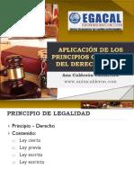 5-9-16 Acs - Cap - Aplicación de Los Principios Generales Del Derecho Penal