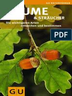 pilocashtein