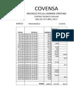 CENTRO TECNICO CAPILAR.xlsx