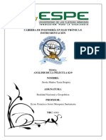 T7 Analisis de k19 -ensayo.docx
