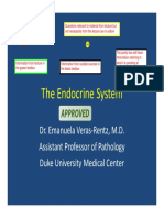 06.06.4_Pathology_of_the_Endocrine_System_I_final_.pdf