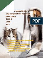 Animales Domesticos
