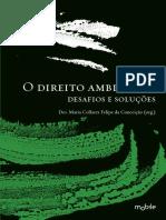 DIREITO AMBIENTAL - DESAFIOS E SOLUÇÕES