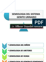 semiologadelsistemagenitourinario-100504000327-phpapp02ygrdyhdrfhghvh