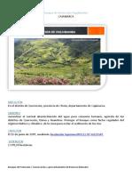Bosque de Protección Pagaibamba mono.docx
