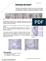 Fisiologia Del Parto Exelente-1