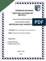 Plantas Haploides Informe (1)