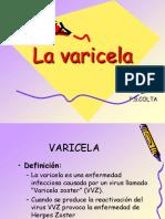 varicela (1)